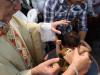batizado-22-05-2011-045