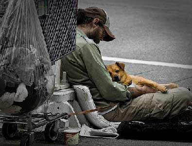 Relações com as pessoas e os cachorros que vivem nas ruas.