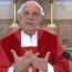 Homilia do Pe. Julio no Domingo de Pentecostes – 31/05/2020